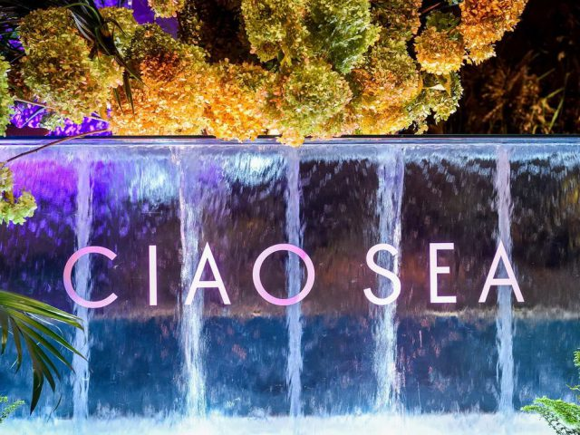 Ciao Sea Logo Waterfall